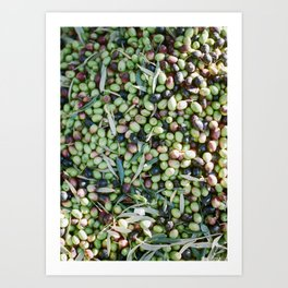 """Travel photography """"Mixed Olives""""   Shot in Morocco   Botanical Art Print"""