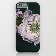 foreground iPhone 6s Slim Case