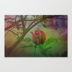 Dipped in Dew, Nestled by Nature Canvas Print