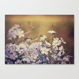 Reaching above the crowd Canvas Print