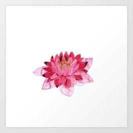 Lotus Flower - Sacred Nature Art Print