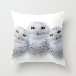 Mother Snowy Owl & Owlets Throw Pillow