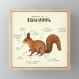 Anatomy of a Squirrel Framed Mini Art Print