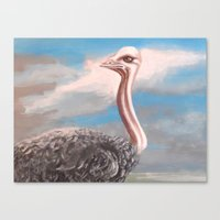 ostrich Canvas Prints featuring OSTRICH by Peter Maring