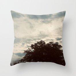 Light Scenery Throw Pillow