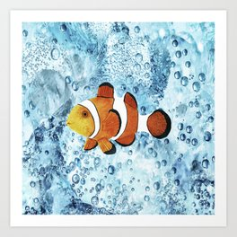 Illustration of Nemo Clown Fish Art Print
