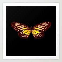 Butterfly - Yellow Brown & Black - Back Lit Glow Art Print