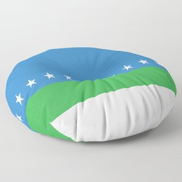 Flag of San Jose Costa Rica Floor Pillow