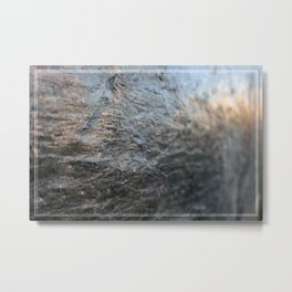 Reflected Light Metal Print
