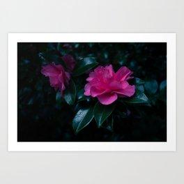 Dark flowers II Art Print
