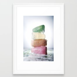 21321 Framed Art Print