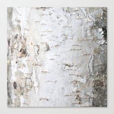 Birch Bark Canvas Print