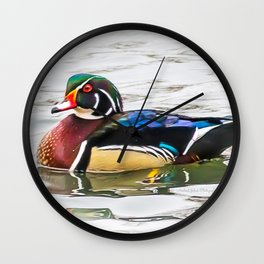 Wood Duck on the channel Wall Clock