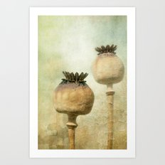 Old but still beautiful! Art Print