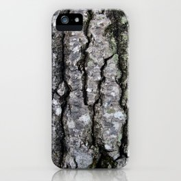 Bark in the Maine Woods iPhone Case