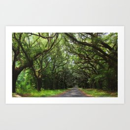 Magical southern oaks Art Print