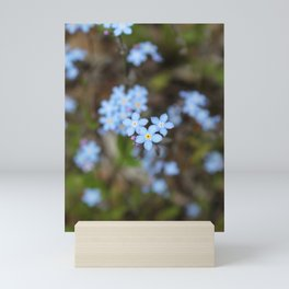3 Forget-Me-Nots in the Center Mini Art Print