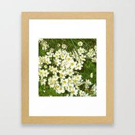 JC FloralArt 03 Framed Art Print