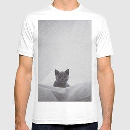 Kitten under the sheets T-shirt