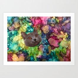 Grey Cat Face Art Print