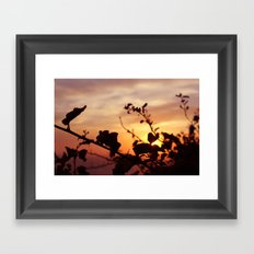The Sun Peeks Through Framed Art Print