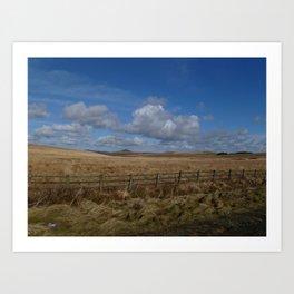 Cornish Field Art Print