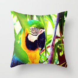 Rain Carrier Throw Pillow