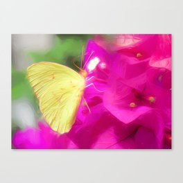 Yellow Butterfly Pink Flowers Canvas Print