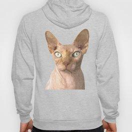 Sphynx cat portrait Hoody