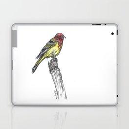 Sir Tanager Laptop & iPad Skin