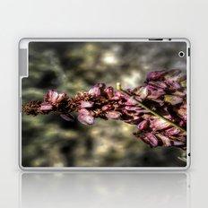 Matter of Perspective Laptop & iPad Skin