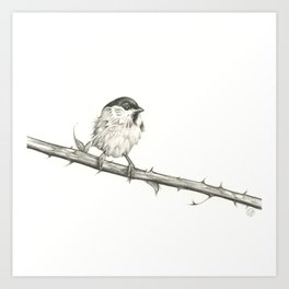 Milk-Warm Mewling of Chickadees Art Print