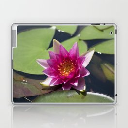 Longwood Gardens - Spring Series 305 Laptop & iPad Skin