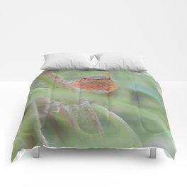 An Allen's Hummingbird Amid Mexican Sage Comforters