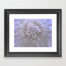 Une Fleur parmi les Fleurs Framed Art Print