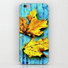 Fallen Leaves iPhone & iPod Skin