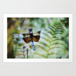 Dragonfly :: Winged Fern Art Print