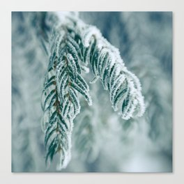 Winter Landscape- Covered in Snow Canvas Print