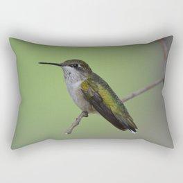 Ruby Throated Humming Bird At Rest Rectangular Pillow