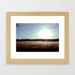 Staring Into the Sun Framed Art Print