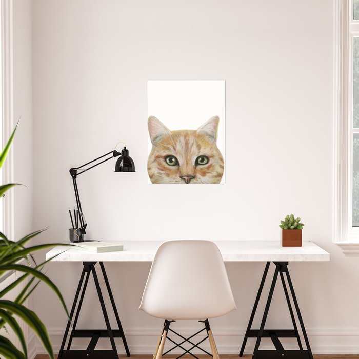 Golden British shorthair, America shorthair, cat, acrylic illustration by  miart Poster by miartdesigncreation