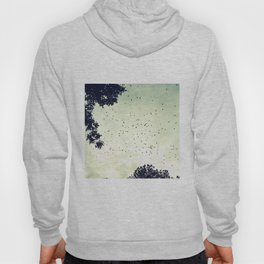 Flock of birds at sunset Hoody