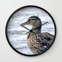 Lone Mallard Wall Clock