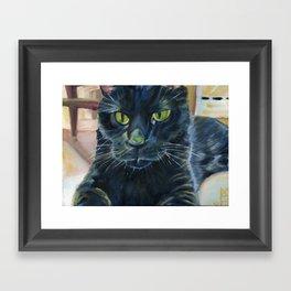 Totoro the cat Framed Art Print