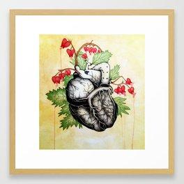 Bleeding Heart Framed Art Print