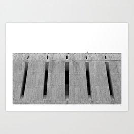recreation003 Art Print