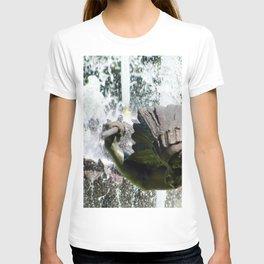 JC Nichols Fountain Indian T-shirt