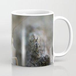 Macro Butterfly Eye Coffee Mug