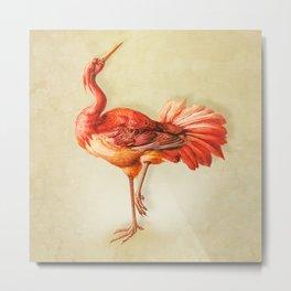 Vintage Coral Bird Metal Print