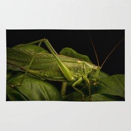 Locust macro shot Rug